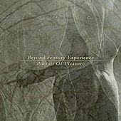 Pursuit Of Pleasure by Beyond Sensory Experience
