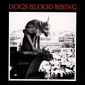 Dogs Blood Rising by Current 93