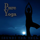 Power Yoga - Sounds For Yoga by Relaxation Yoga Instrumentalists