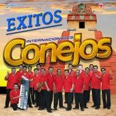 Exitos Marimba Guatemala by Marimba Orquesta Internacionales Conejos