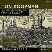 Organ Works V - Buxtehude: Opera Omnia X by Ton Koopman