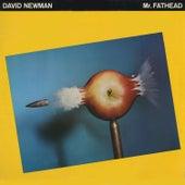 Mr. Fathead by David 'Fathead' Newman