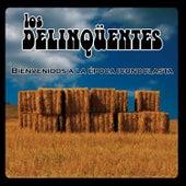 Bienvenidos A La Época Iconoclasta by Various Artists