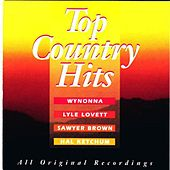 Top Country Hits von Various Artists