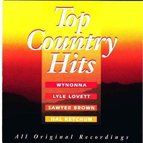 Top Country Hits by Various Artists
