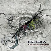 Out of the Wilderness by Robert Bradley's Blackwater Surprise