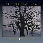 Necrose Evangelicum by Brighter Death Now