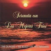 Serenata con Los Mejores Trios by Various Artists