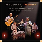 The Concert by Friedemann