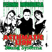 Asthmatic Lion Sound Systema by Fermin Muguruza