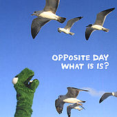 What Is Is? by Opposite Day