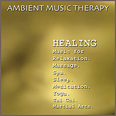 Healing Music for Relaxation. Massage. Spa. Sleep. Meditation. Yoga. Tai Chi. Martial Arts. by Ambient Music Therapy