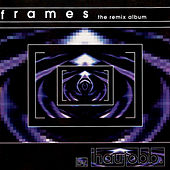 Frames-The Remix Album by Haujobb