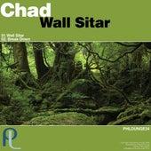 Wall Sitar by Chad