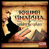 Hidden Scriptures by Krumbsnatcha