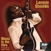 Blues Is On Fire by Lonnie Shields