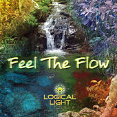 Feel the Flow by Various Artists