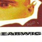 Earwig by Pegboy
