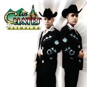 Me Haces Falta by Los Cuates De Sinaloa