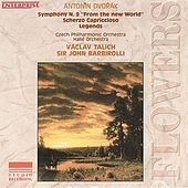 ANTONIN DVORAk by Various Artists