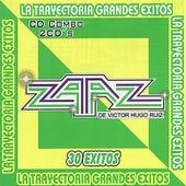 La Trayectoria Grandes Exitos by Various Artists