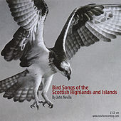 Bird Songs of the Scottish Highlands and Islands by John Neville