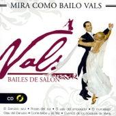 Bailes De Salón, Vals (Strauss) by Gran Orquesta Vienesa