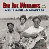 Back Home In Crawford by Big Joe Williams