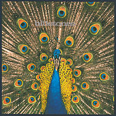 Expecting To Fly by The Bluetones