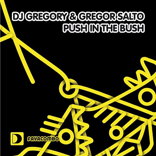 Push In The Bush by DJ Gregory
