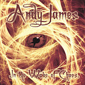 In the Wake of Chaos by Andy James