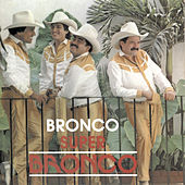 Super Bronco by Bronco