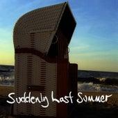 Suddenly Last Summer by Jimmy Somerville