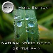 Gentle Rain by Mute Button