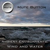Ambient Environments: Wind And Water by Mute Button