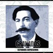 Estudios Expresivos Y Otros by Granados