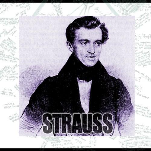 Strauss by Johan Schultz