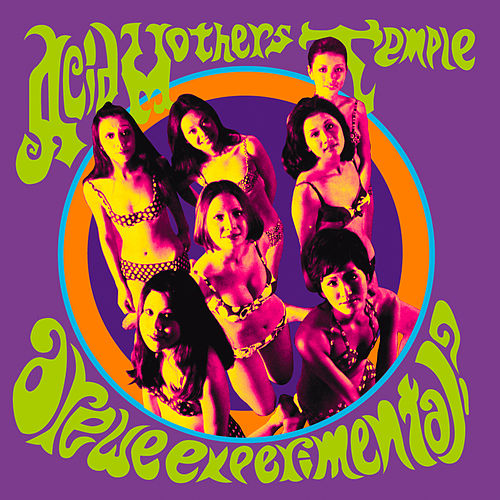 Are We Experimental? by Acid Mothers Temple