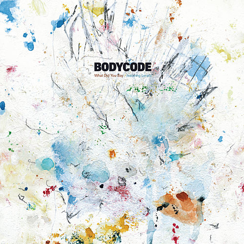What Did You Say by Bodycode