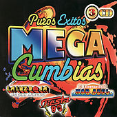 Puros Exitos - Mega Cumbias by Various Artists