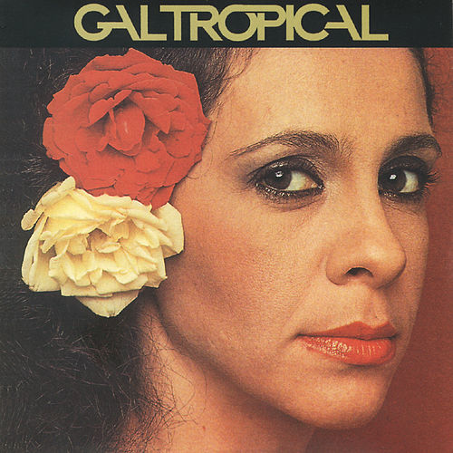 Gal Tropical by Gal Costa