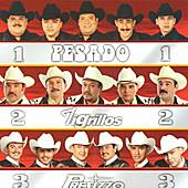 Grandes Norteno by Pesado