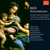 Johann Sebastian Bach: Weihnachtskantaten BWV 1/61/40 von Various Artists