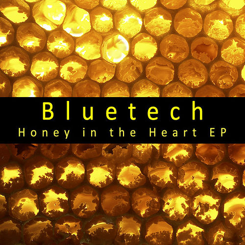 Honey in the Heart EP by Bluetech