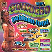 100% Sonidero Poblano Total Vol. 2 by Various Artists