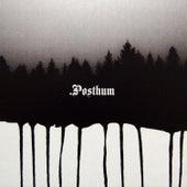 Posthum by Posthum