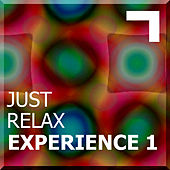 Just Relax – Experience 1 by Various Artists