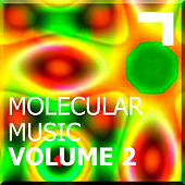 Molecular Music Volume 2 by Various Artists