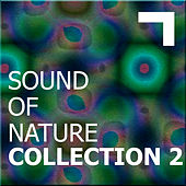 Sound of the nature – collection 2 by Various Artists