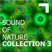 Sound of the nature – collection 3 by Various Artists